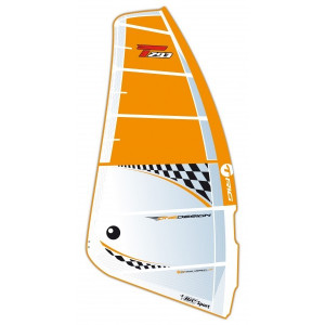 BIC One Design Camber segel